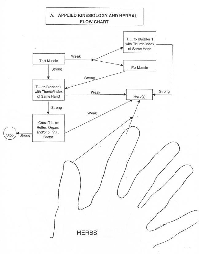 Applied Kinesiology and Herbal Flow Chart