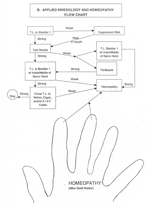 ak-and-homeopathy-flow-chart